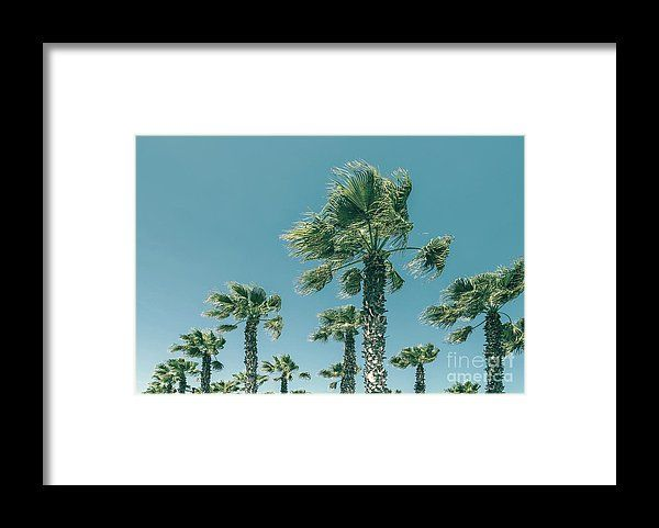 Green Palm Trees On Clear Blue Sky Framed Print