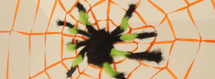 MEA Toile araignée géante