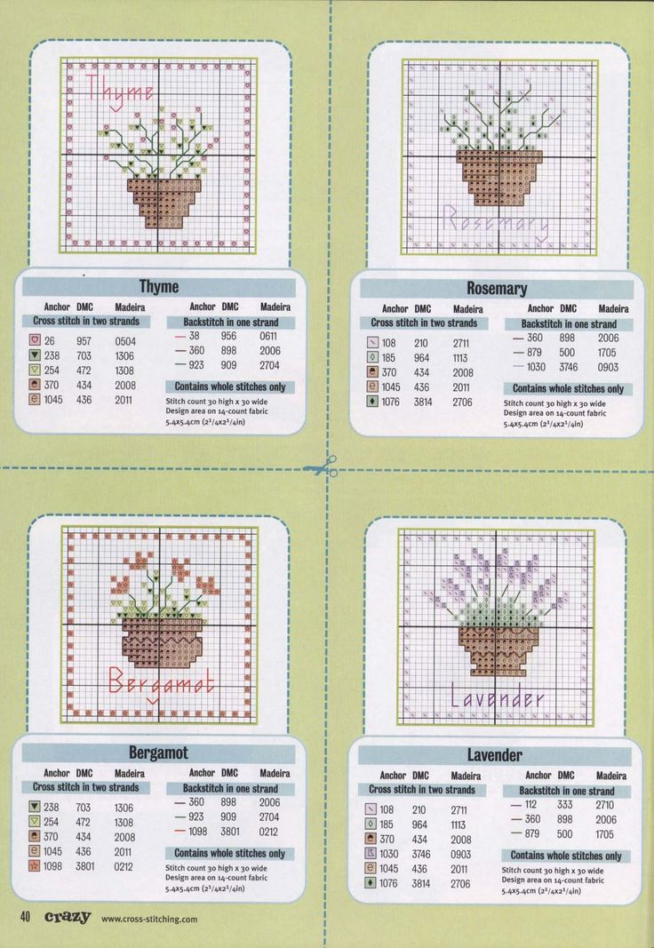 Potted Herbs 4/4