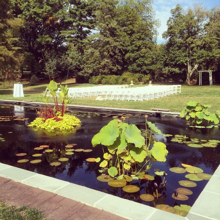 122 Best Belmont Manor Amp Historic Park Images On Pinterest