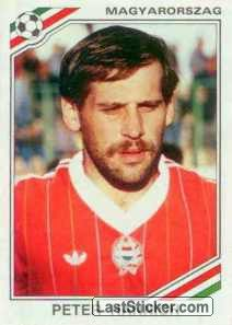 Image result for mexico 86 panini hungary hannich