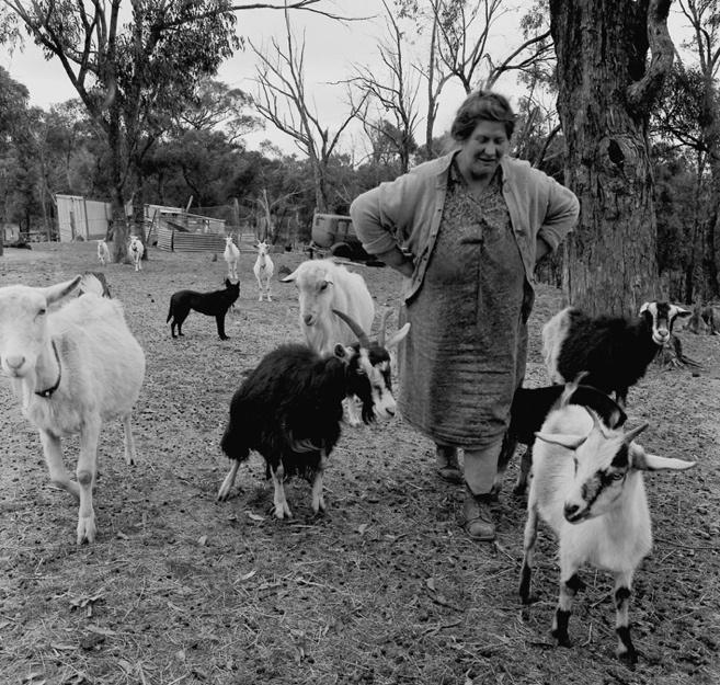 Untitled [Woman on farm, Kinglake Victoria ] 1974selenium toned gelatin silver print   by Sue Ford (1943-2009) - an Australian born photographer, film maker, and photomedia artist