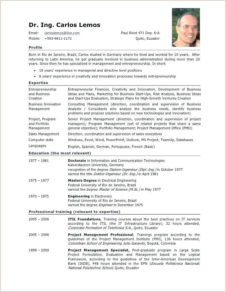 Standard Cv Format Germany Standard Cv Format Curriculum Vitae Format Resume Examples
