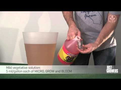 How To Mix a 3-Part Hydroponics Nutrient Solution - Just For Growers