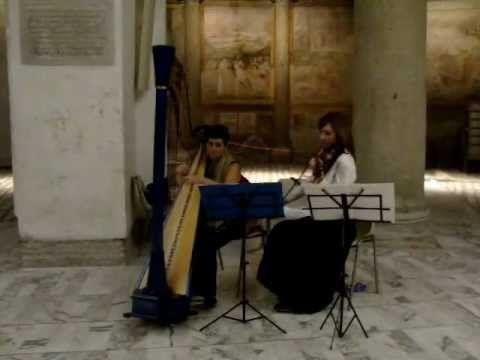 """""""Musica per..."""" eventi a Roma. Musica celtica: duo arpa e violino"""