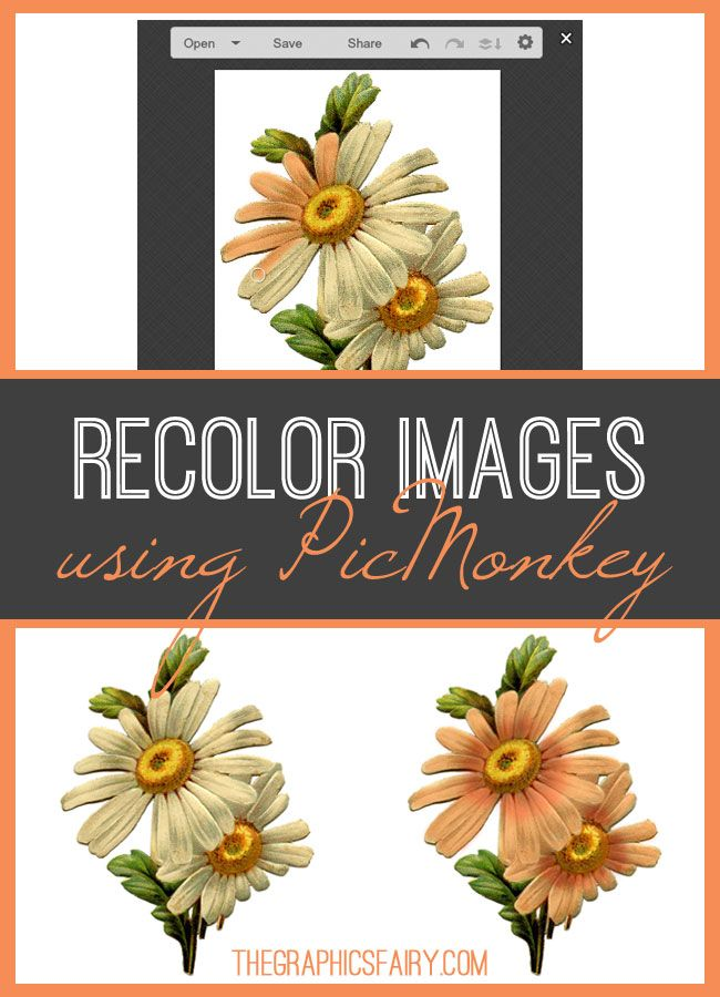Today, we're going to show you a quick trick you can use to recolor images using PicMonkey. Have you had an image where the color was just not right?