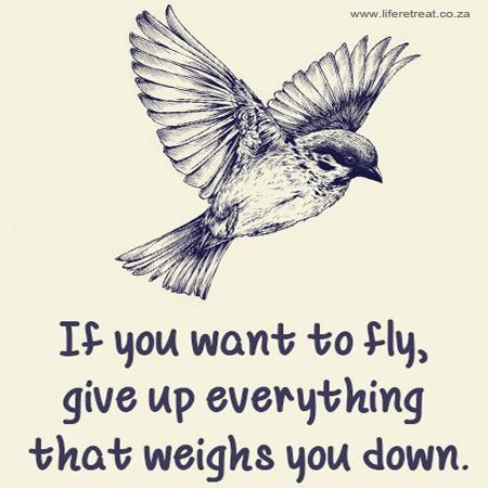 "Inspirational Quote - Fly - http://www.liferetreat.co.za/inspirational-quote-fly/ If you want to fly, give up everything that weighs you down.  You can follow our daily, inspiring words of wisdom on #liferetreat by signing up for our feed.   Fly [Tweet ""Follow @liferetreat_ for daily words of wisdom & inspirational quotes #liferetreat""]  [Tweet ""Today's #quote:If... Life Retreat 