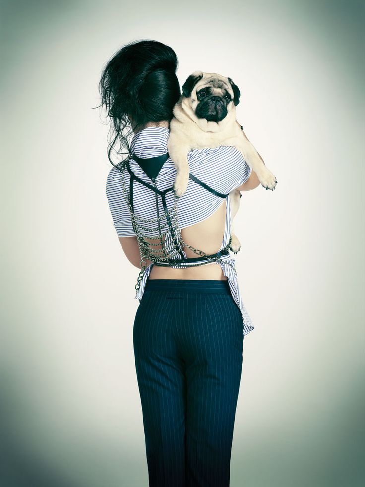 Paper mag did a photo shoot to support the humane society. I really love the way they did it! Wish there were more big dogs though...