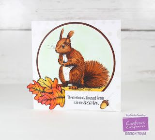 Designed by Stephanie Dowding for Crafter's Companion. Supplies: Sheena Douglass Perfect Partners stamp set - Little Acorn Spectrum Noir Markers: Squirrel - TN3, TN4, TN5, TN6, TN7 Acorn - TN2, TN3, TN5, TN6 Leaves - OR1, OR2, OR3 Background - GB4, BT1, BT2, EB7 Collall All Purpose Glue Decorative Stencils by Sheena - Pop Dotty Ultra Smooth Premium White Cardstock