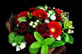 Image result for hypercium bouquet