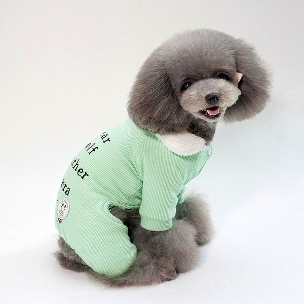 New Dog Winter Coat Cotton Teddy Clothes Thick Warm Jacket Dog