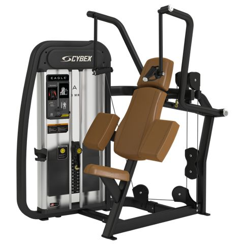 eagle nx arm extension  cybex  no equipment workout