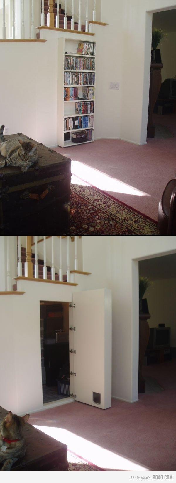 Hidden door bookcase  Cat friendly ! or maybe under your stairs?  Cat food & Cat box? or out in the garage?