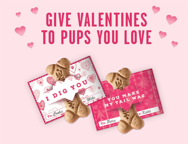 I woof you! Print your free Doggy Valentine treat holder cards here.