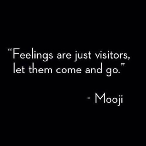 Feelings are just visitors. Let them come and go. #PadreMedium #GuardianAngelReading