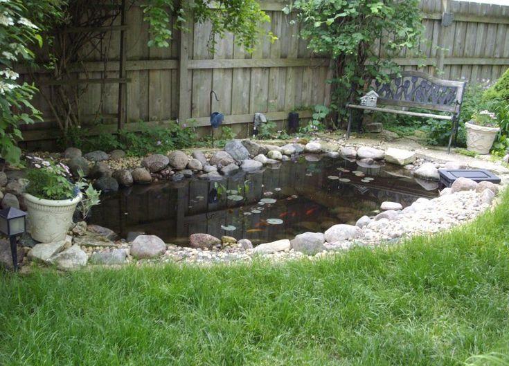 cute water lilies and koi fish in modern garden pond idea pond pondsealant