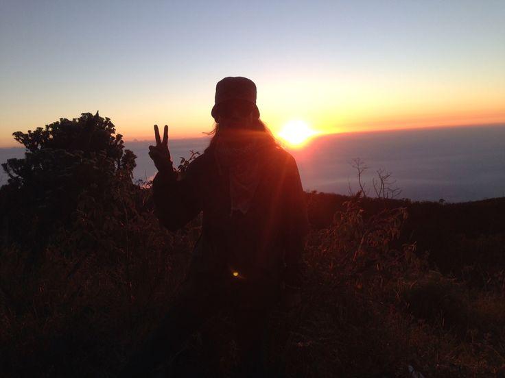 Piss selamat datang matahari