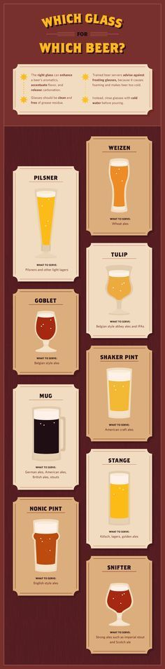 Everything You Need To Know About Craft Beer