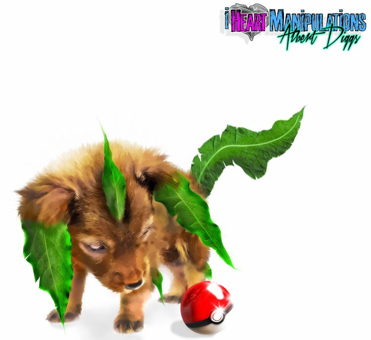Follow us on fb.com/iheartmanipulations  Real life baby Leafeon  #leafeon #pokemon #photomanipulation