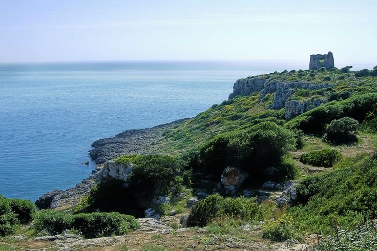 Torre Uluzzo - Porto Selvaggio