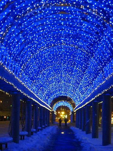 Walking underneath the trellis in Christopher Columbus Park Boston, Massachusetts BY ALEXANDRA D. FOSTER