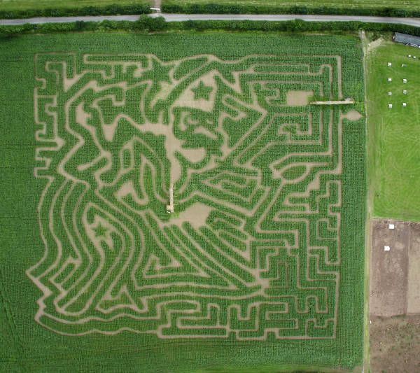 The Amazing Cornish Maize Maze a Cornwall