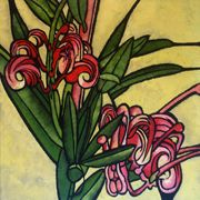 Grevillea by Julie Hickson