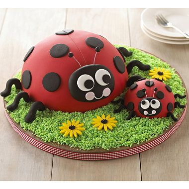 Ladybird Cake recipe - From Lakeland - Going to give it a go for Paige's party... and if epic fail - there's always Asda!!