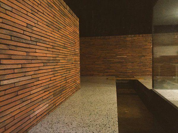 Vande Moortel Facing brick infinitum 3003 exclusive!
