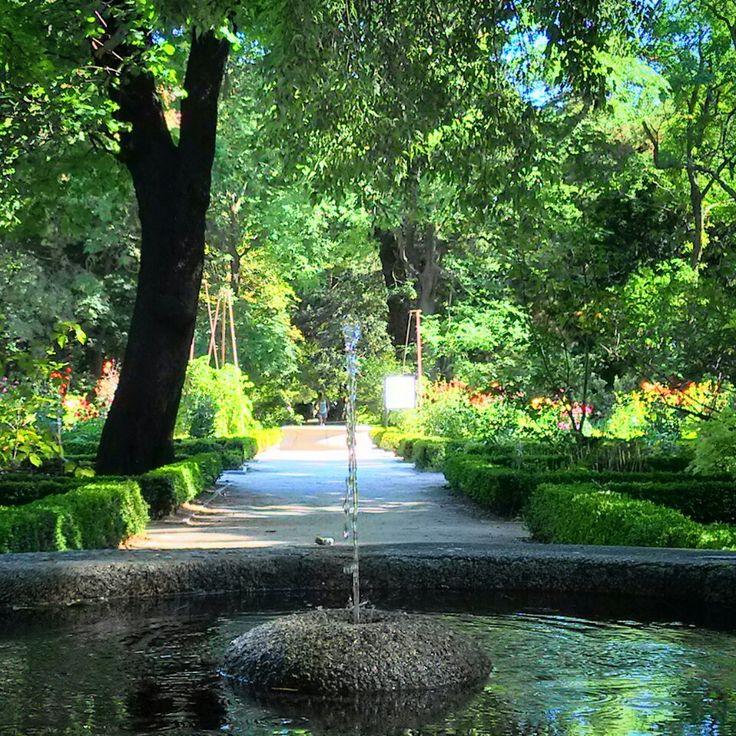 Real Jardín Botánico en Madrid, Madrid