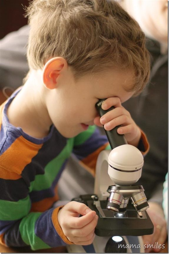 Nurture a love of science from an early age by using microscopes with young children. From mamasmiles.com