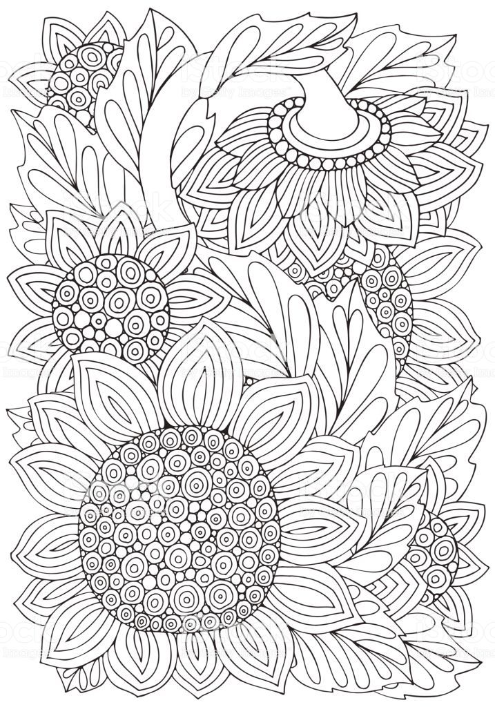 Coloring Book Page With Sunflowers And Leaf In Doodle