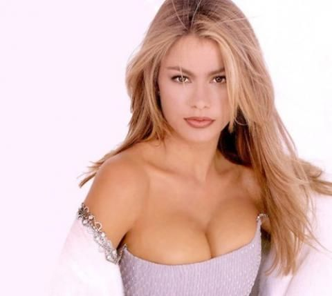 What Color Is Sofia Vergara S Natural Hair