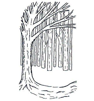 Gummi Stempel, Hintergrund Baum - Hobby, Crafts and Paperdesign