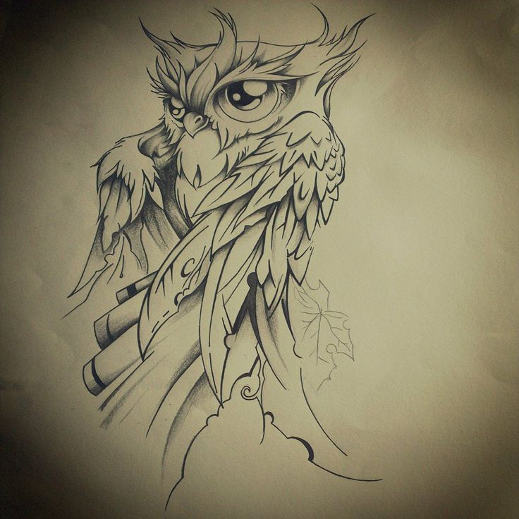 Owl Line Drawing Tattoo : Best owl tattoos images on pinterest