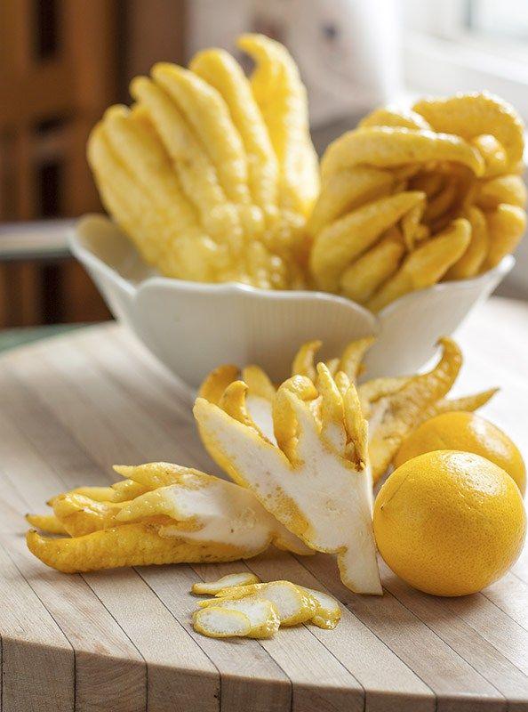 Citron marmalade