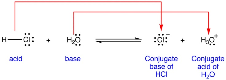 Bronsted-Lowry Acid & Base: the relationship between conjugate acids and their respective conjugate bases is that the acid particle has an additional proton that the base does not