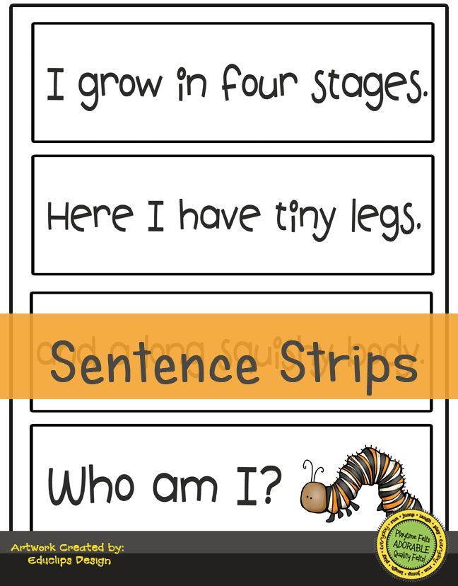 picture about Sentence Strips Printable named Butterfly Lifetime Tale Digi Down load Lifestyle Cycles Butterfly