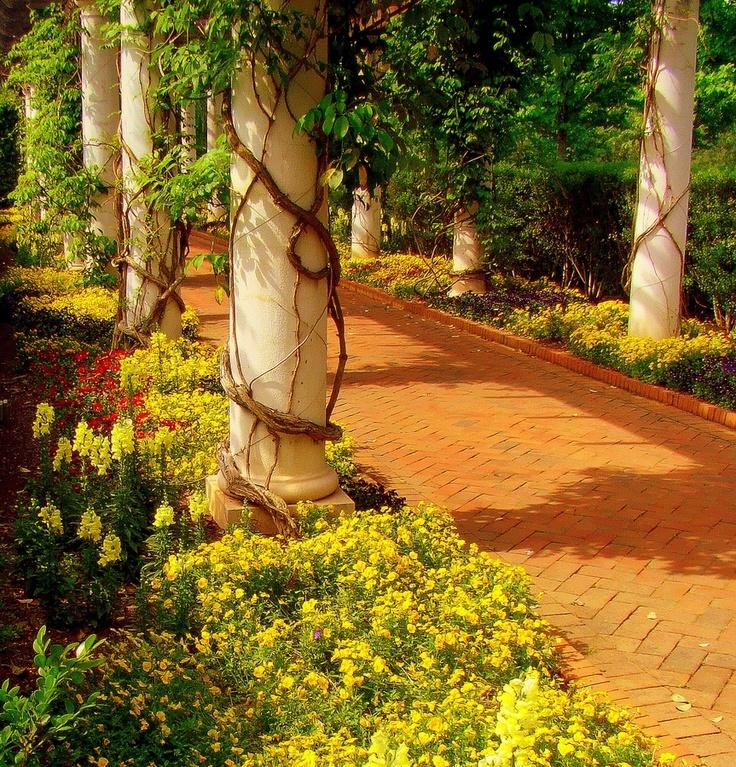 175 Best Daniel Stowe Botanical Gardens Images On Pinterest Botanical Gardens Conservatory