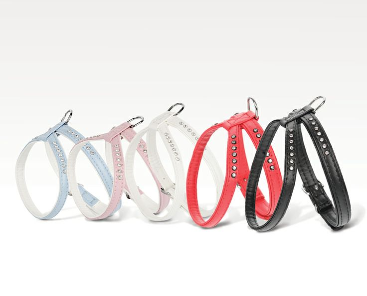 "PL Szelki ósemki Glamour ENG Eight-shaped harness Glamour GER Geschirr ""Acht"" Glamour www.dingo-shop.com.pl #dog #pies #dingo"
