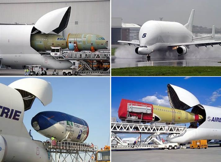 17 Best Images About Airbus On Pinterest Abu Dhabi Air