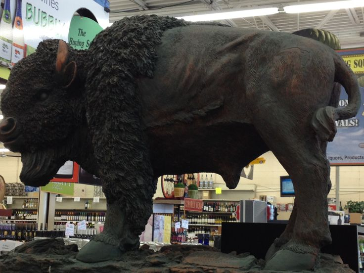 Come and see our Buffalo at The Wine and Liquor Outlet!