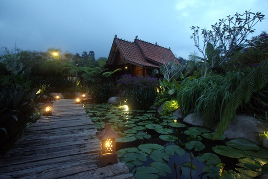 D'jadul Village & Resort. This old-school beauty village and resort showcases a rich culture of heritage, reflecting ori...