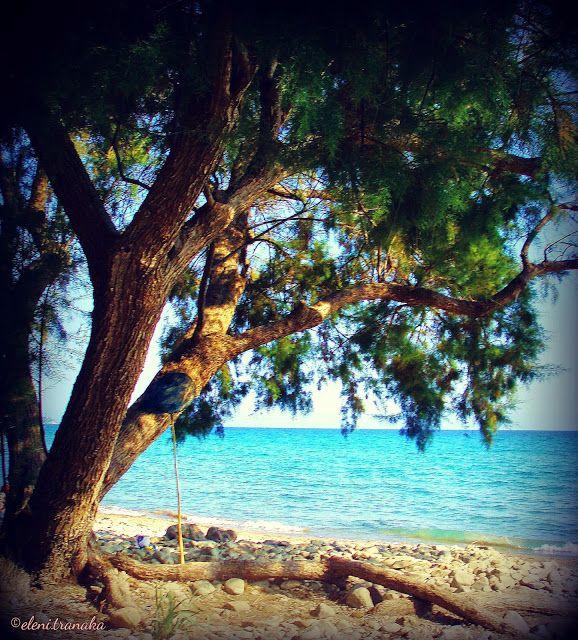 Ελένη Τράνακα: Δάφνη, Ζάκυνθος / Dafni, Zakynthos