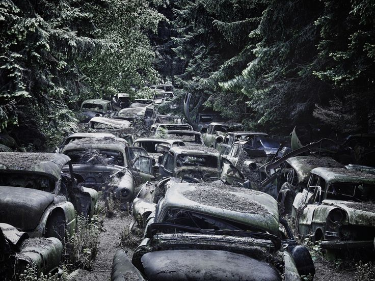 Where do cars go when their driving days are done? Many are crushed or recycled, but others are left out in nature to decay and crumble. It's not the most