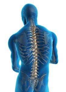 Bangalore Chiropractic| Sciatica and Slip Disc Treatment in Bangalore| Chiropractor India