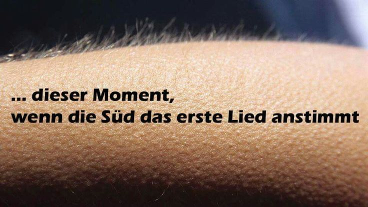 Südtribüne That moment, when the Süd starts singing the first song <3