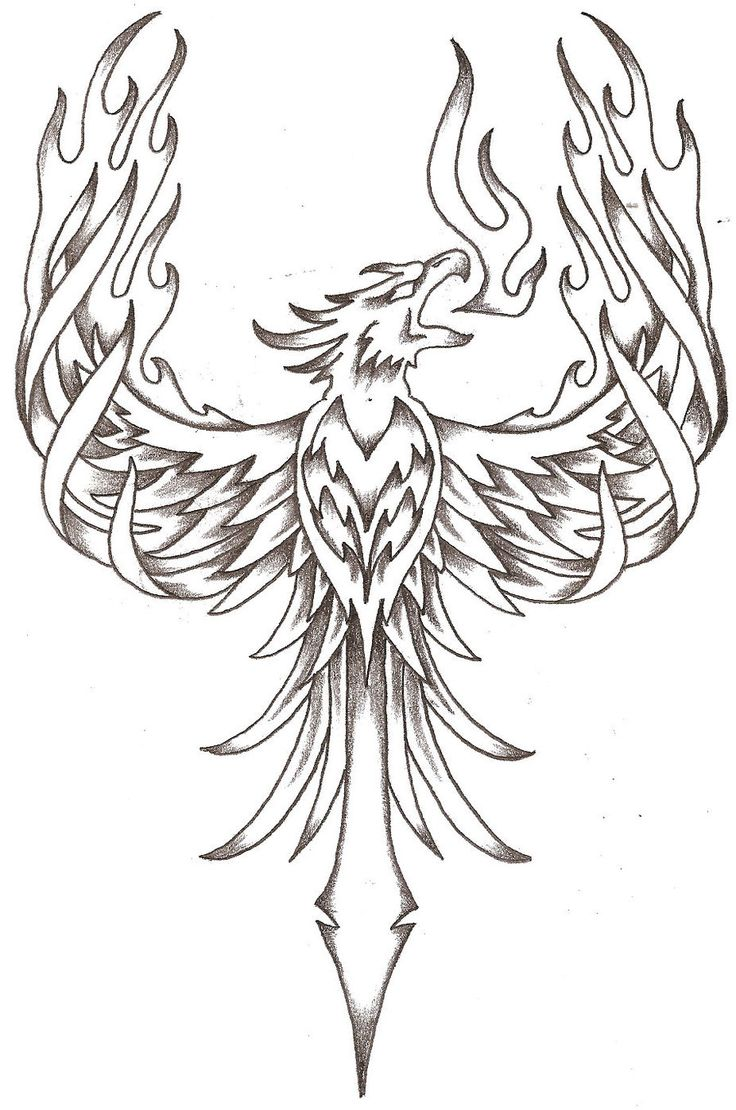 phoenix firebird by thelob traditional art drawings other 2010 2015 ...