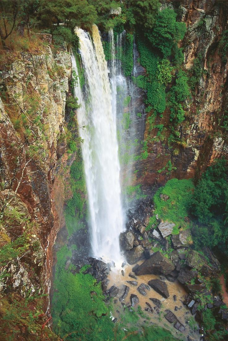 Queen Mary Falls #Queensland #nationalpark