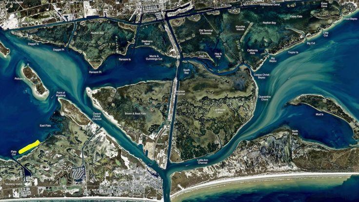 Texas Fishing Tips Fishing Report June 22 2017 Port Aransas Area With Capt. Moon Shelton